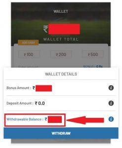 FanFight App Payment Proof