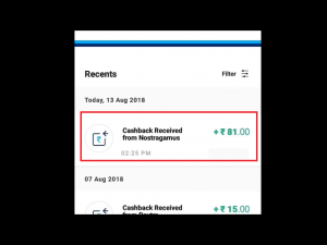 Nostra Pro Payment Proof 2020