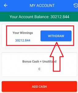 MyTeam11 Payment Proof